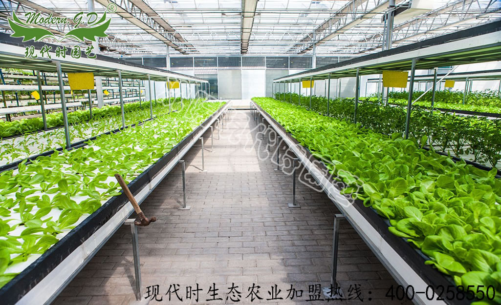 Tiled soilless cultivation
