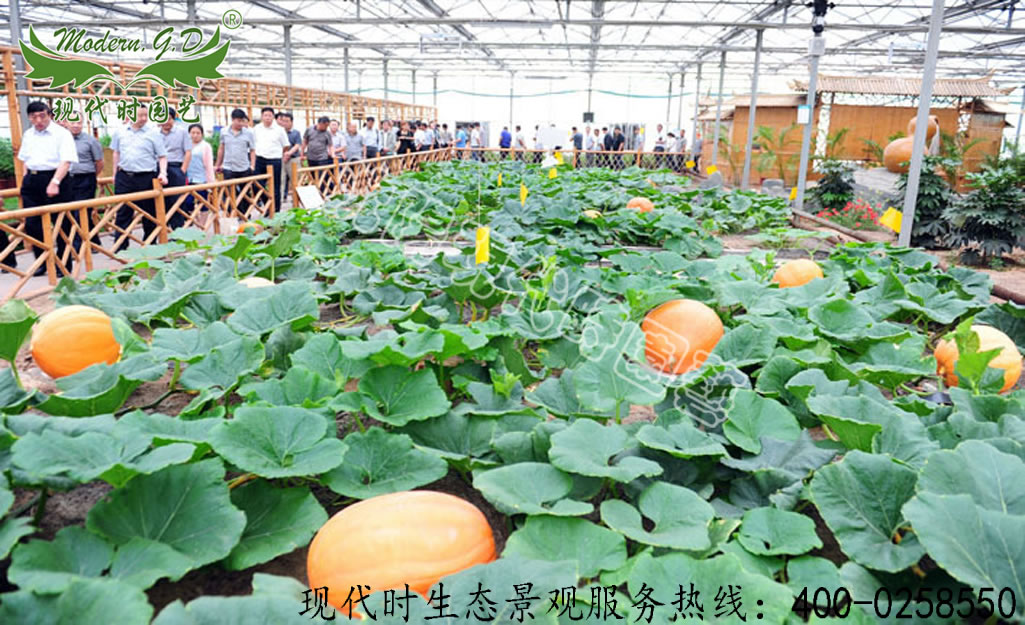 Sightseeing Agricultural Park