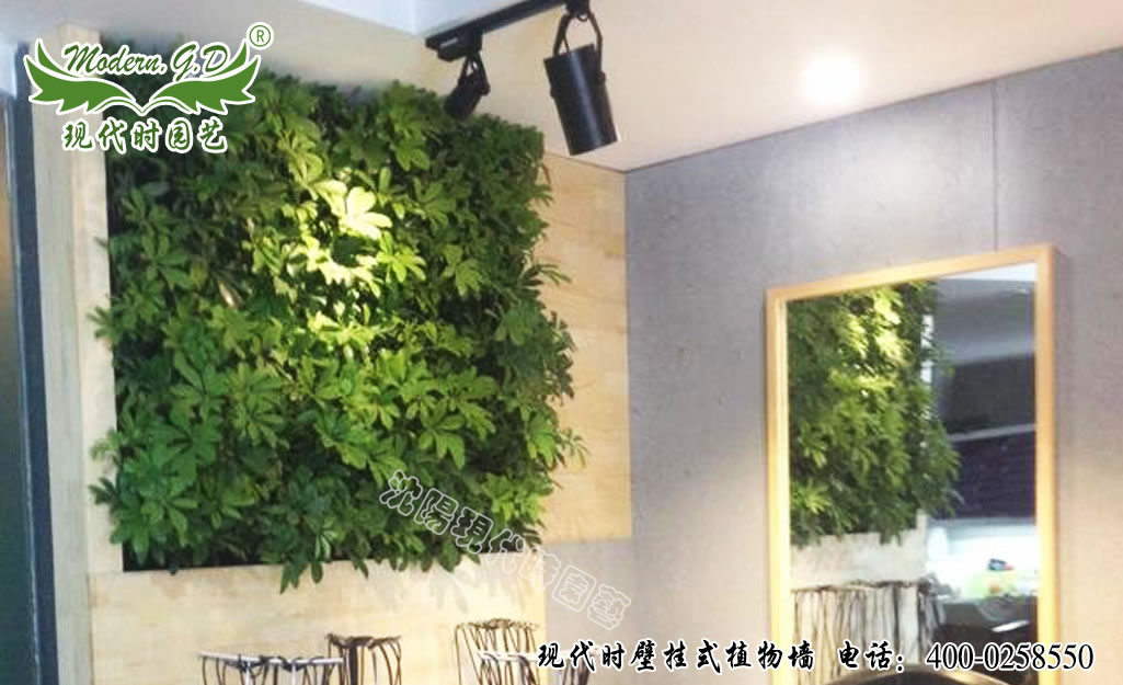 Murals plant wall