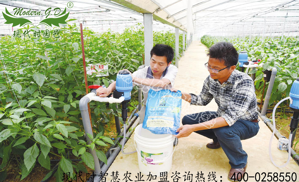 Cultivation management